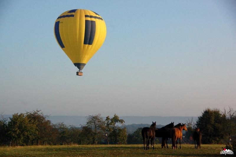 Ballonfahrt-2009-09-13-08-01-33